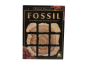 Preview: Fossil gebraucht